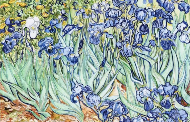 Rosa del Desierto y Van Gogh