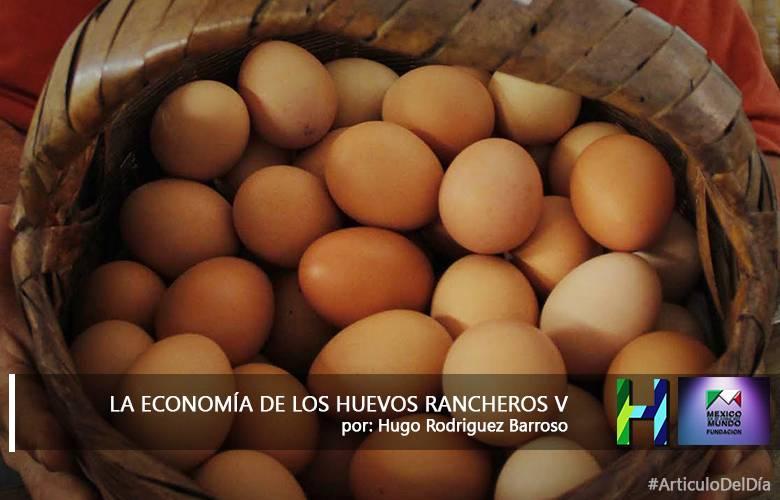 LA ECONOMIA DE LOS HUEVOS RANCHEROS V