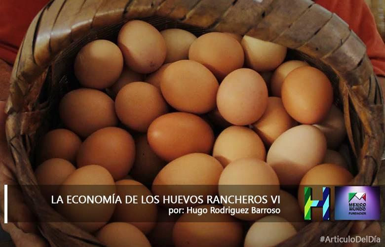 LA ECONOMIA DE LOS HUEVOS RANCHEROS VI